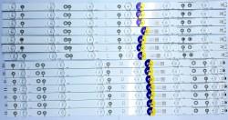PHILIPS - LB-PM3030-GJD2P6C490712AEP2-R-Y , PHILIPS , 49PUS6101/12 ,TPT490U2-EQYSHM.G REV:SC19 , 14 ADET LED ÇUBUK